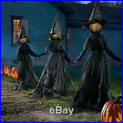 3pc Outdoor Halloween Lighted Witch Coven Haunted Graveyard Yard Decor Prop