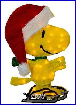 Christmas Peanuts Snoopy & Woodstock Ice Skating Lighted Yard Decor 2-D 2 Piece