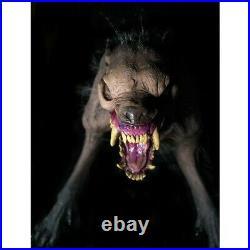 In Stock== Halloween Rotten Rabid Zombie Dog Haunted House Horror Prop Decor