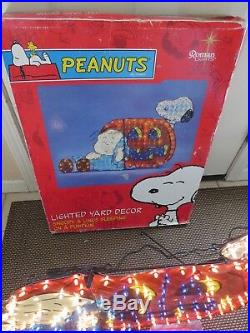 Roman Lights Halloween Lighted Yard Outdoor Prop Peanuts Snoopy Charlie Brown